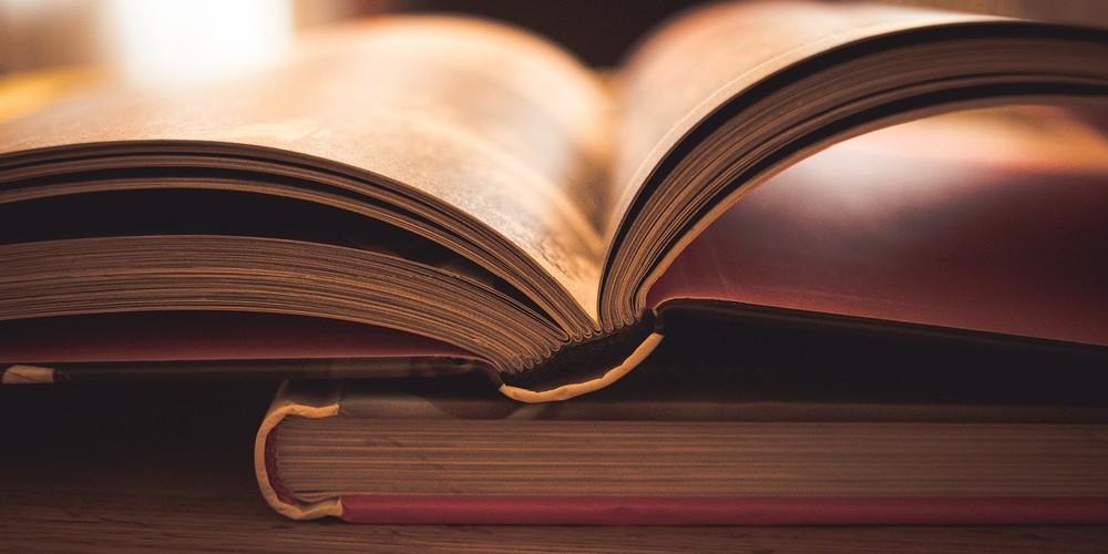 Обучающие материалы отДиректа иAdWords зафевраль 2018года. Выпуск 8
