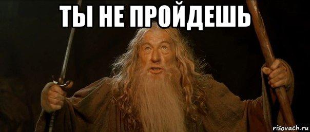 1_moderaciya.jpg